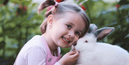 Kind mit Hase vor Tiertransport